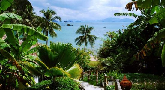 Fred Olsen Thailand Beach