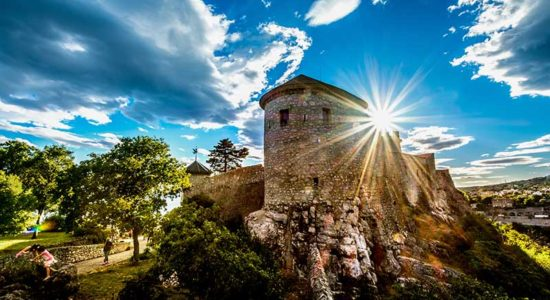 HAL Croatia Italy Cruise Rejika Image
