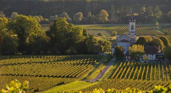 Taste of Bordeaux 1