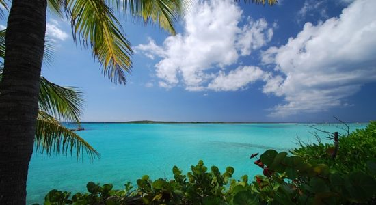 caribbean-2357829_640